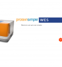 Instrument Spotlight: Protein Simple Wes